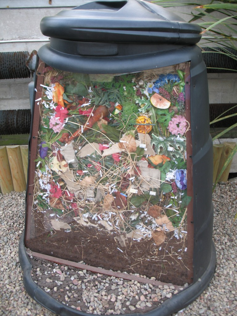 An insight into the workings of a compost bin.